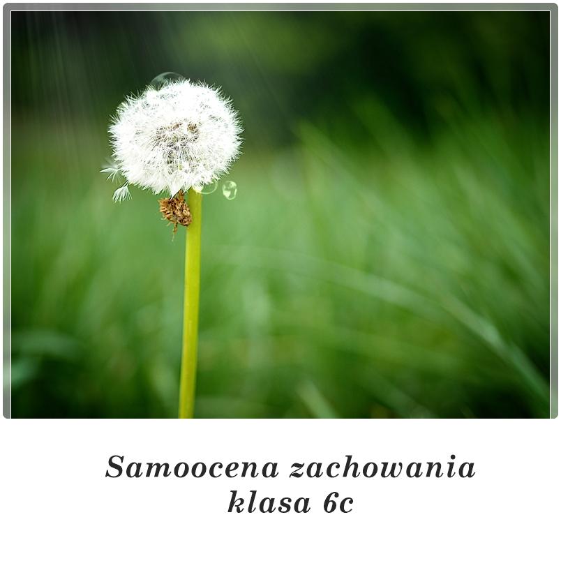 SAMOOCENA ZACHOWANIA klasa 6c